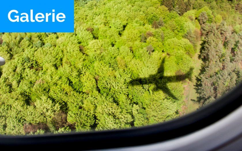 Bild: Titelbild Impressionen Linienflugverkehr Deutschland